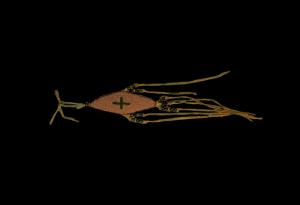 Assiniboin amulet